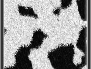高级动物绒毛皮毛纹理Photoshop笔刷素材下载