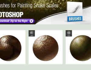爬行动物蛇、穿山甲、蜥蜴等鳞片Photoshop笔刷素材