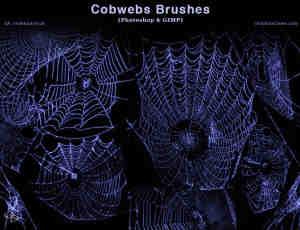 真实的蜘蛛网效果Photoshop笔刷素材