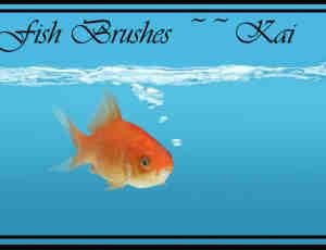真实的金鱼缸里的金鱼Photoshop笔刷