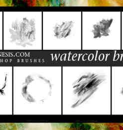 10个高清晰Photoshop水彩画笔笔刷下载-画笔笔刷 第 9 页