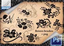 漂亮的手绘鲜花花纹图案Photoshop印花笔刷