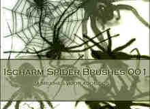 真实的毒蜘蛛Photoshop笔刷素材