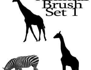 长颈鹿、斑马Photoshop笔刷素材