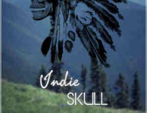 非主流骷髅头部落酋长PS笔刷素材下载