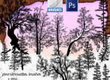 松树、雪松、圣诞树Photoshop树木笔刷