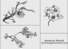 树枝上的花朵Photoshop笔刷下载