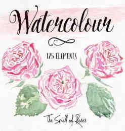 漂亮的手绘水彩玫瑰花图案Photoshop笔刷下载-花形笔刷 第 19 页
