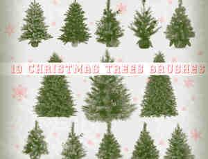 19个真实的圣诞节圣诞树造型PS笔刷下载