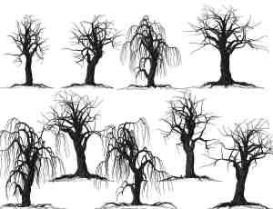 枯干的树木、恐怖大树Photoshop鬼树笔刷