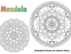 20种曼荼罗式花纹图案PS植物花纹印记笔刷