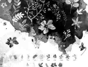 16种水彩花卉、花纹图案PS笔刷下载