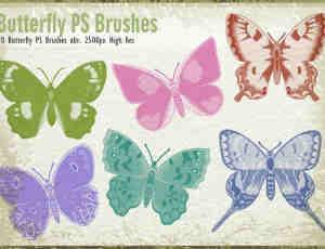 20种漂亮蝴蝶图形PS昆虫笔刷