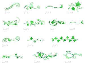 漂亮水彩、水粉植物绿叶花纹图案Photoshop笔刷素材