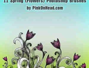 11种黑暗花朵、花纹图像PS笔刷下载