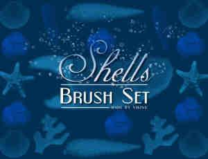 贝壳、海星Photoshop海洋元素笔刷