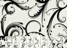 漩涡蕨类植物花纹图案PS笔刷免费下载