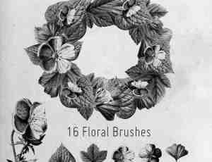 16种枫树、银杏、菩提树、海葵鲜花花圈PS笔刷素材