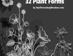 32种植物野草野花造型PS剪贴画笔刷素材