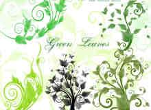 漂亮优美的植物绿叶藤蔓PS笔刷素材
