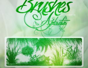 绿色青草、小草、草丛植物Photoshop草地笔刷