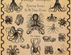 章鱼、乌贼、海底怪物、深海巨兽Photoshop笔刷素材