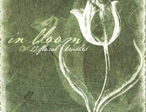 漂亮的植物花朵图案Photoshop笔刷素材