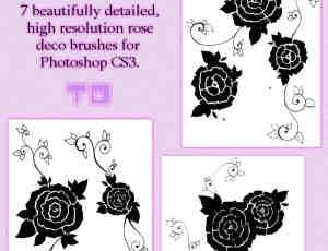 7种漂亮的玫瑰花印记、玫瑰花花纹图案Photoshop笔刷素材