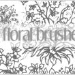 漂亮的植物花纹印花图案Photoshop花纹图案笔刷