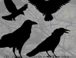 乌鸦图形、飞鸟剪影Photoshop笔刷素材