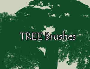 大树剪影图形、树荫造型PS笔刷素材
