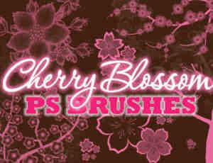 漂亮的樱花图案、樱花花朵花纹PS笔刷素材下载