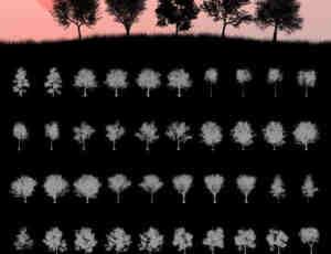 45种超级大树、树木僧侣、森林大树阴影剪影图形Photoshop笔刷素材下载