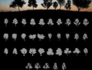 高清的大树、树木阴影剪影、树荫效果Photoshop笔刷素材下载