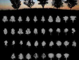 37种高级树荫、大树剪影效果Photoshop笔刷素材下载