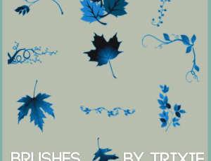 枫叶、梧桐叶等植物叶子藤蔓枝叶图案PS笔刷素材