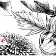 素描式手绘植物花纹图案Photoshop笔刷素材下载
