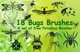 昆虫蜻蜓、苍蝇、甲虫、蚊子、蝎子、蜘蛛、蜜蜂Photoshop笔刷素材下载