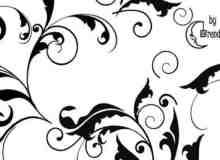 漂亮的蕨类植物艺术花纹PS印花笔刷