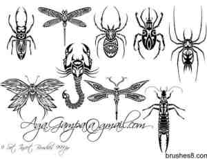 9套漂亮的昆虫花纹、刺青PS笔刷