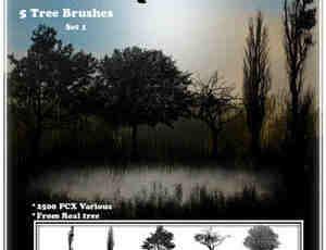 自然树木笔刷