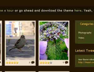 视频图片主题网页模版psd素材