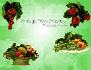 葡萄水果篮笔刷