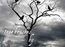 孤树野鸟笔刷