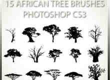 15种非洲树木笔刷下载
