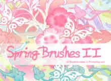 蝴蝶与植物花纹笔刷
