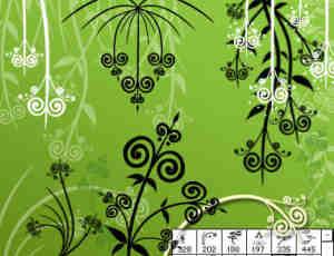 漂亮的矢量藤蔓花纹笔刷