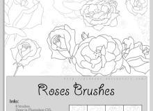 玫瑰花线条笔刷