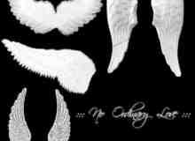 洁白神圣的天使之翼笔刷