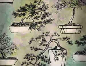 盆景盆栽笔刷